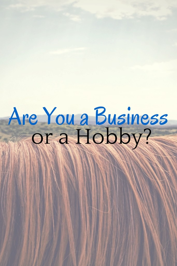Are you a business or are you a hobby?