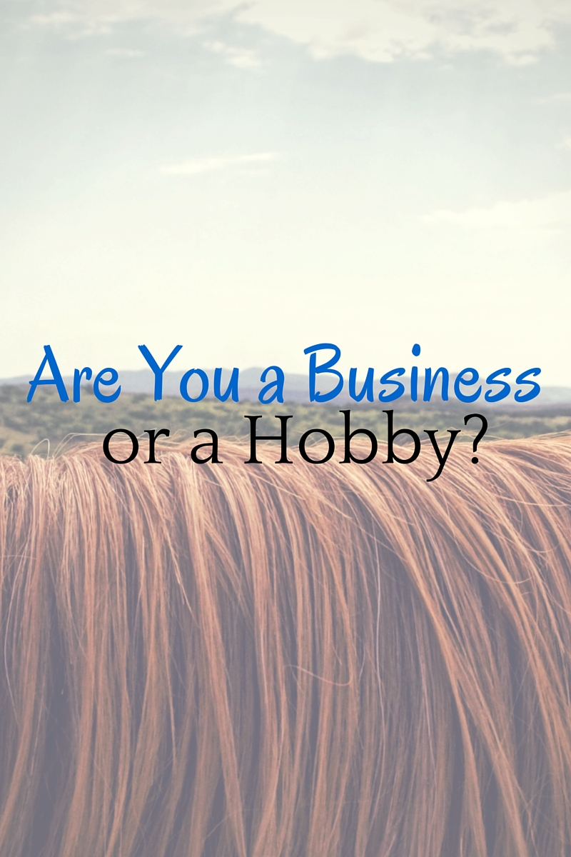 Are you a business or are you a hobby